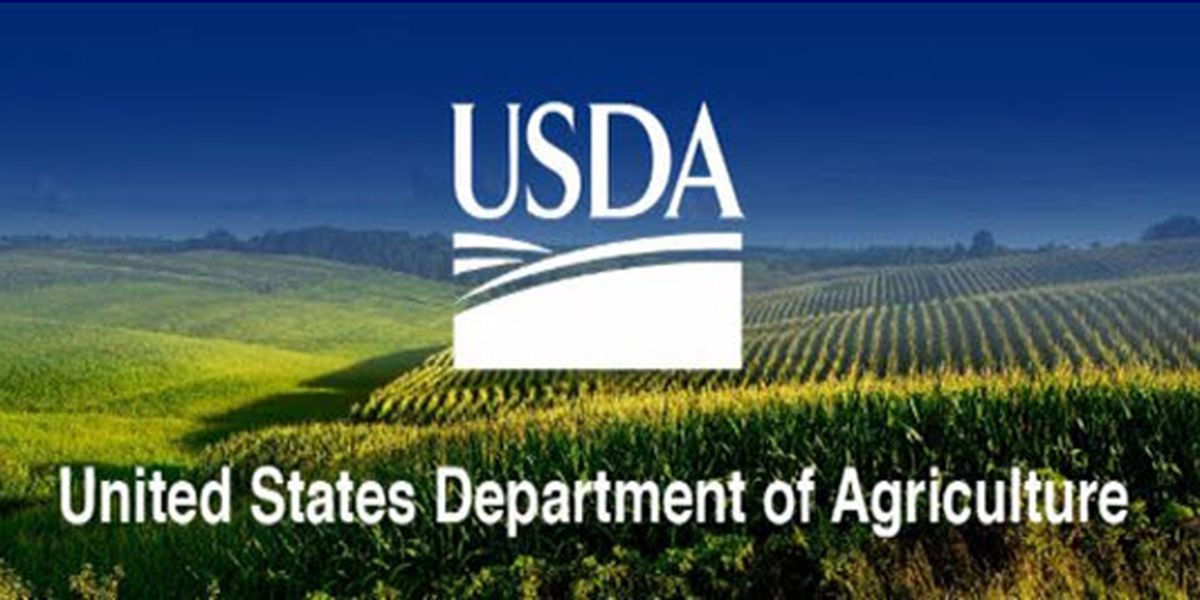USDA offers funding for rural water project in Lamar Co.