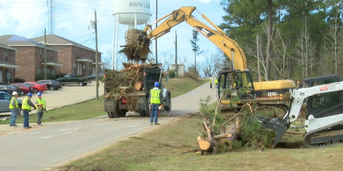 Tornado debris removal begins in the Pine Belt