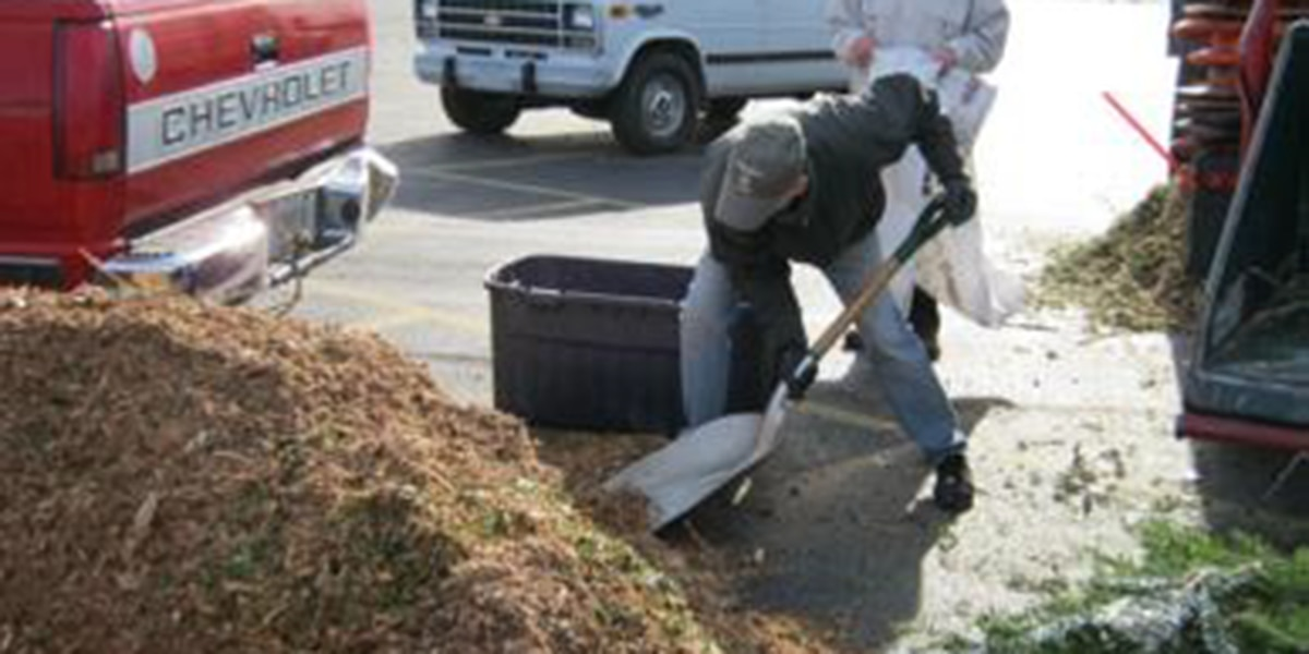 How to recycle your Christmas tree in Hattiesburg