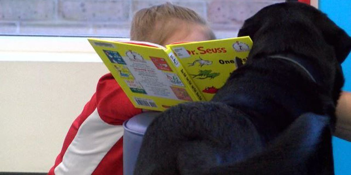 'Paws for Reading' encourages children to read aloud