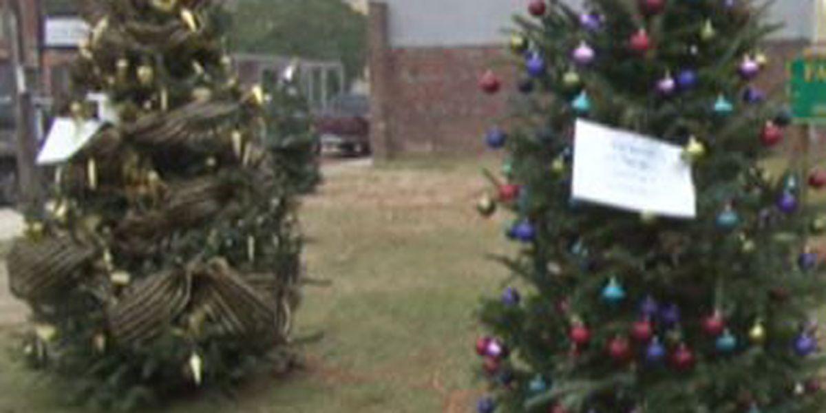 Hattiesburg to offer Christmas Tree Recycling Program