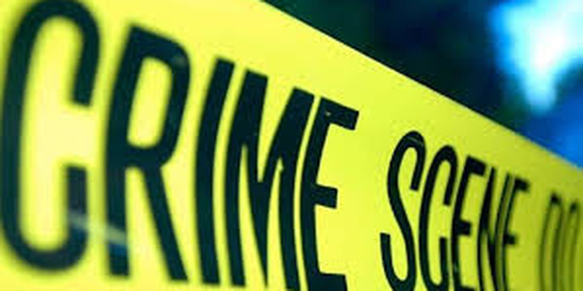 Lamar County Sheriff's Office investigating homicide