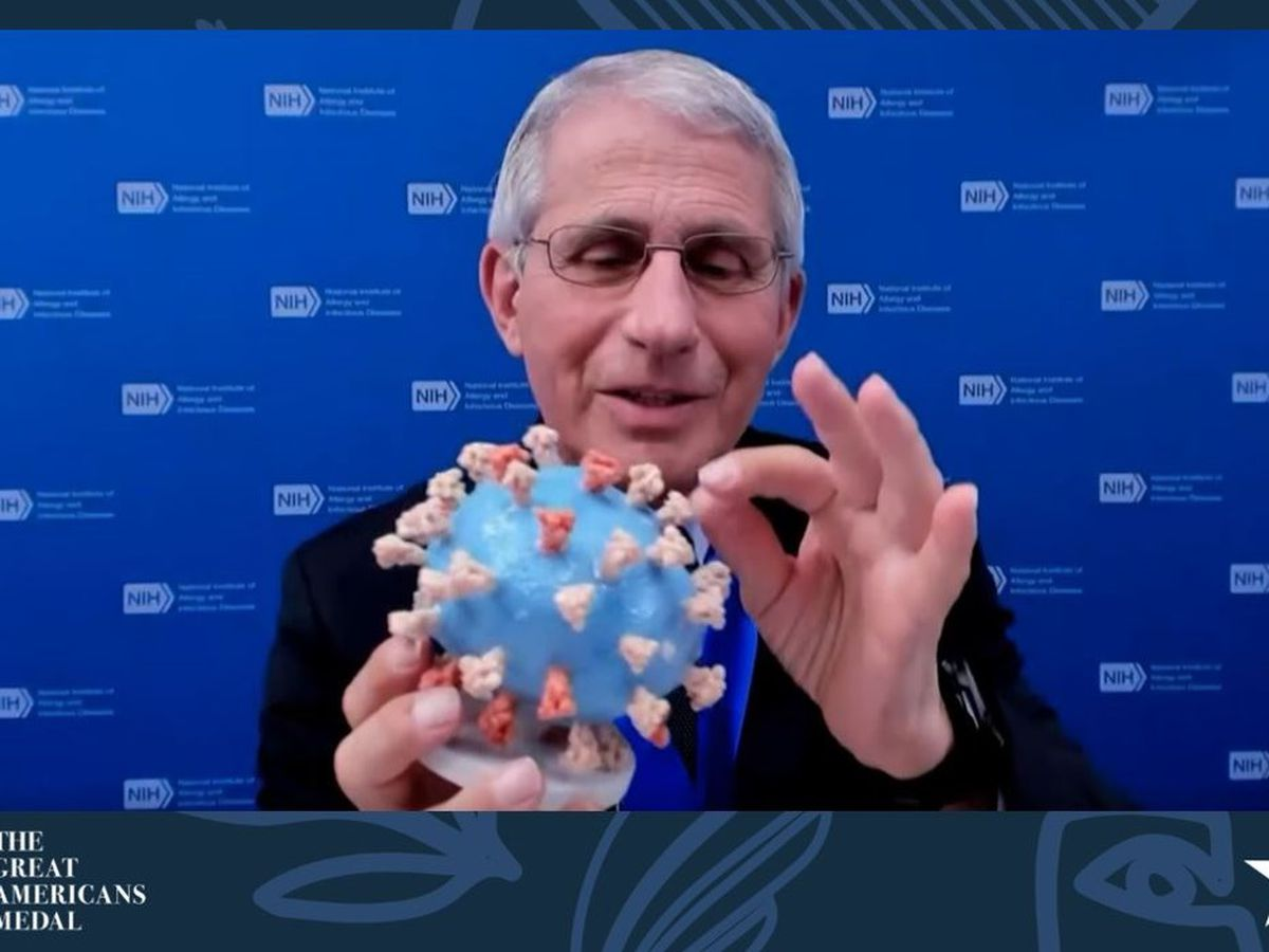 Fauci presents his personal virus model to Smithsonian