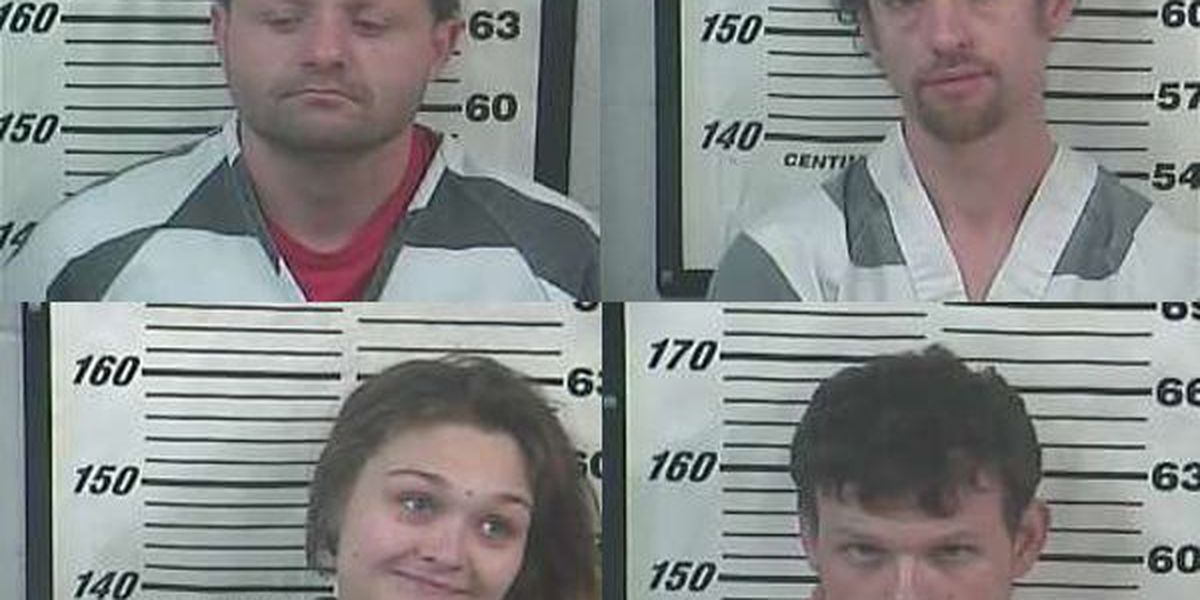 Four arrested for half dozen burglaries in Perry County