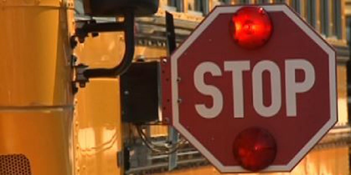 """Nathan's Law"" mother advocates school bus safety"