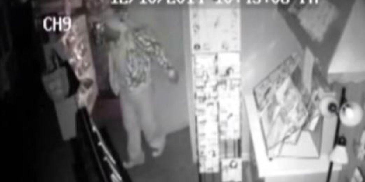 Hattiesburg burglary suspect sought
