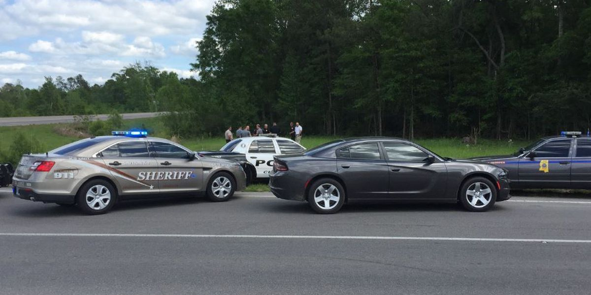 Two arrested in Petal police chase