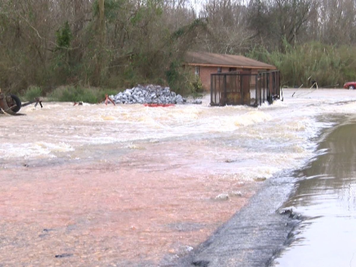 A flood to remember: The Pearl River in Marion County