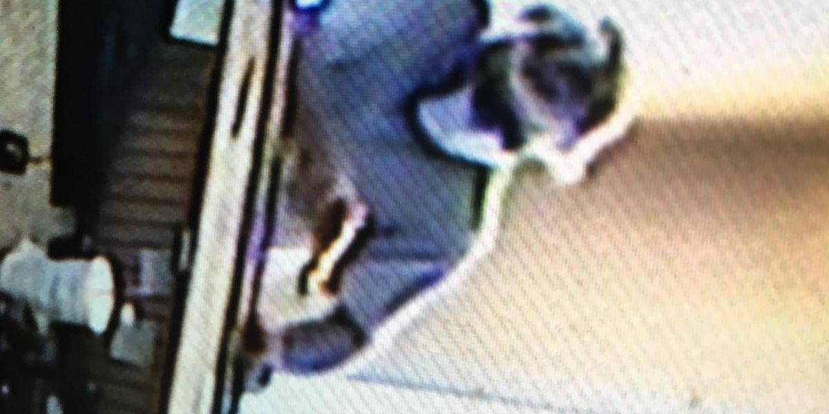 Suspect sought in Hub City armed robbery