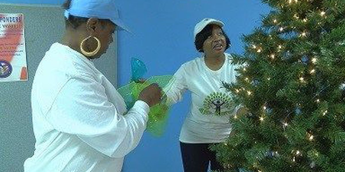 Christmas trees put up at DPS offices for organ donation awareness