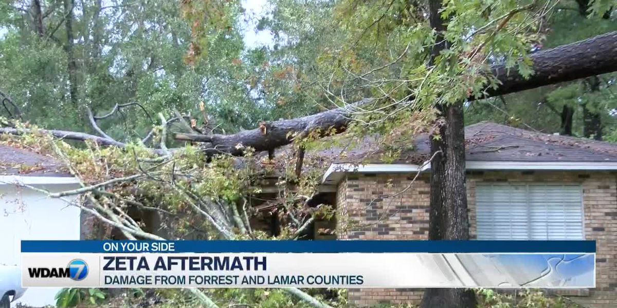 Residents in Forrest and Lamar counties recover from Zeta's impact