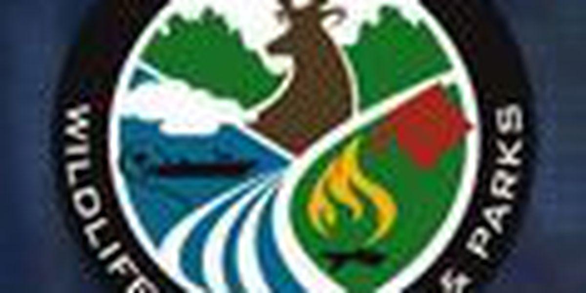 Mississippi, Louisiana wildlife officers arrest men for illegal fishing