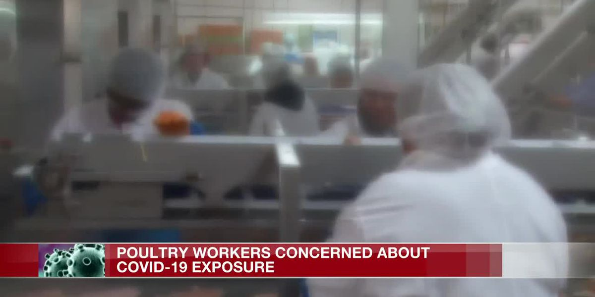 Poultry plant workers grow more concerned about COVID-19 exposure
