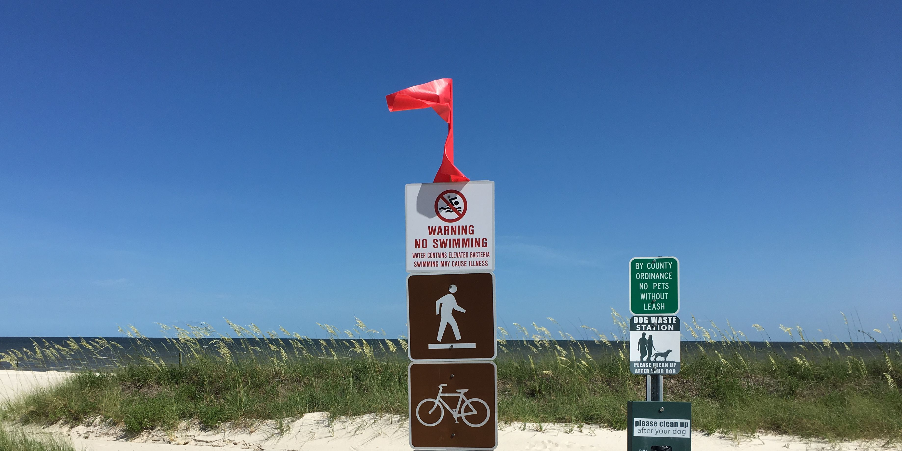 UPDATE: All South Mississippi beaches now under algae-related water warnings