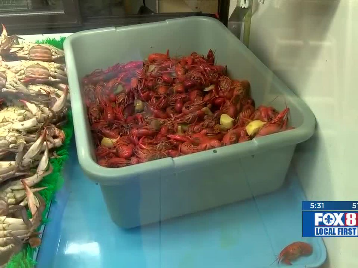 Reasonable crawfish prices to start off this year's season