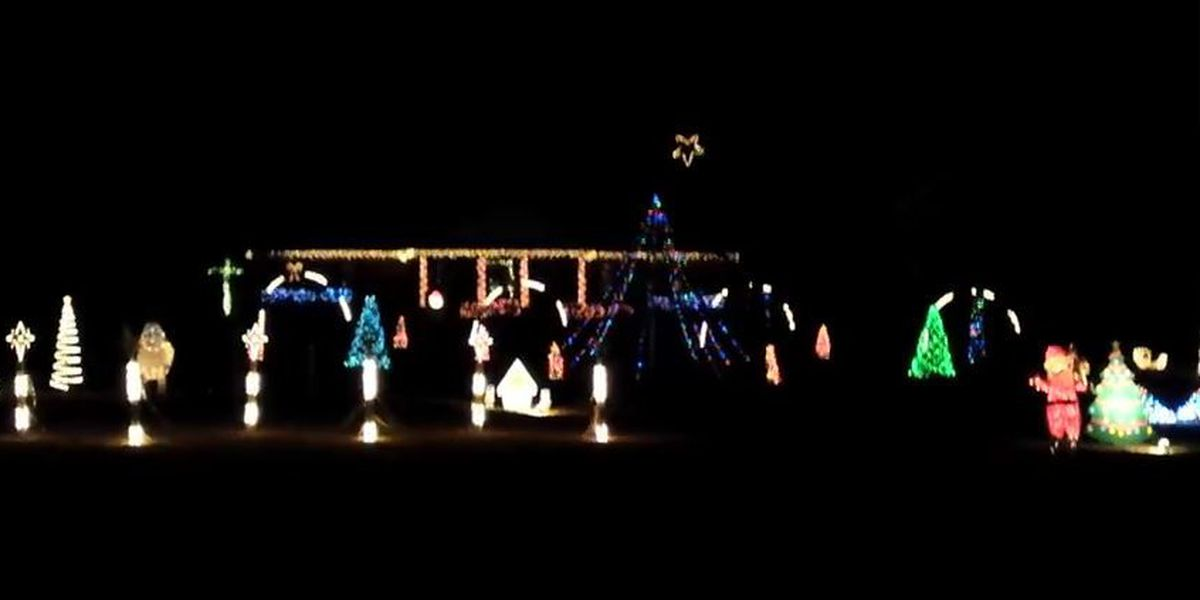 Laurel residents enjoy a free light show
