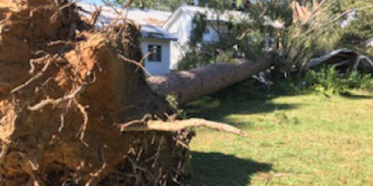Small town of Leakesville feels big impact from Hurricane Zeta