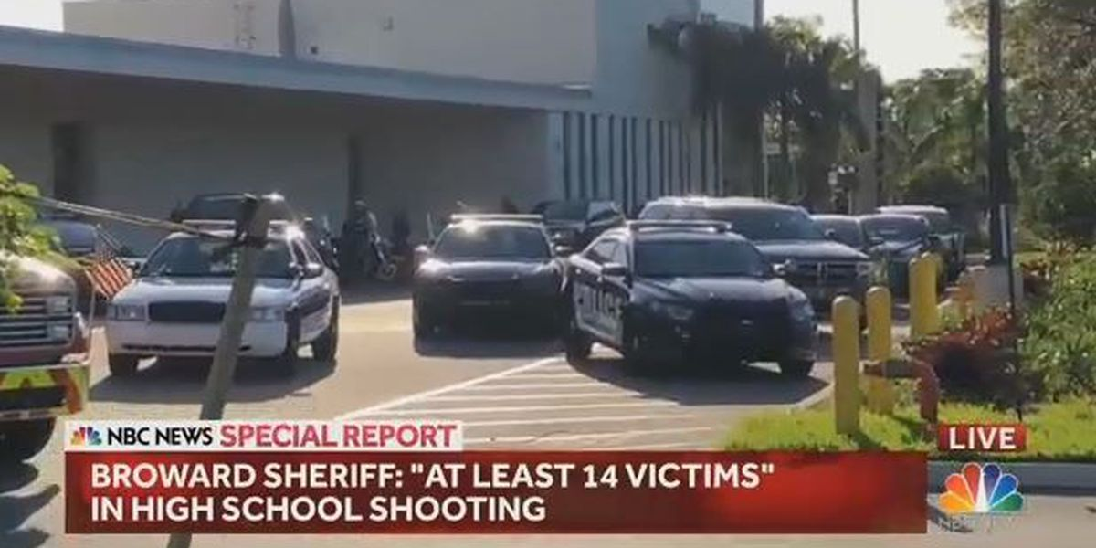 At least 14 victims in FL high school shooting, sheriff says