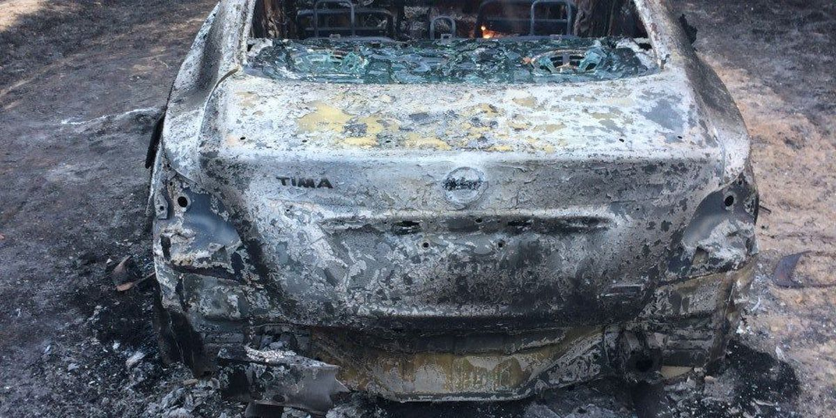Wayne authorities investigating burned out car found in wooded area