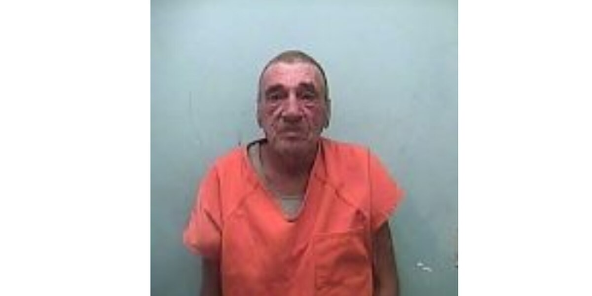 Adams Co. man sentenced to 30 days for killing four dogs