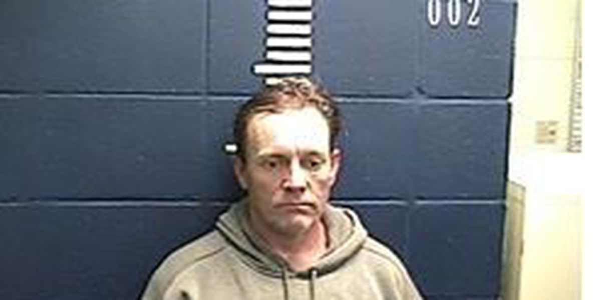 Traffic stop leads to drug arrest for man in Wayne County