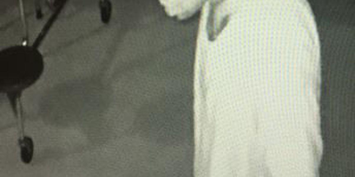 Suspect sought in elementary school burglary