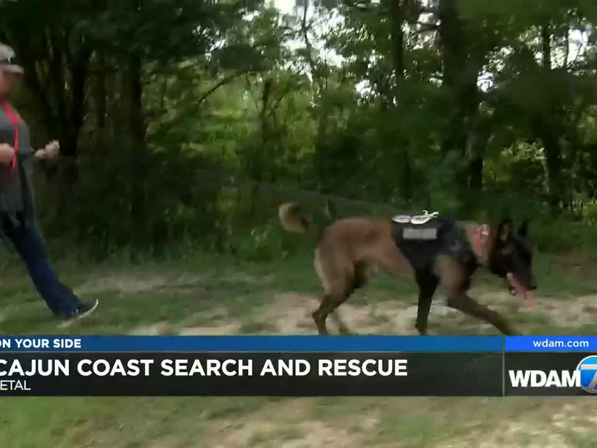 New K9 search and rescue team based in Pine Belt