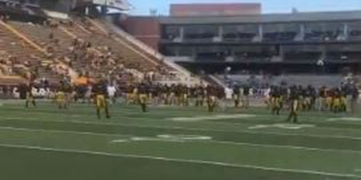 Southern Miss defeats Rice 40-22