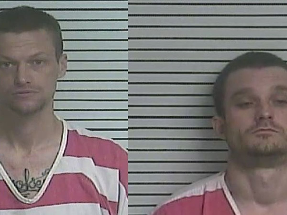 Two men charged with growing marijuana in Forrest County