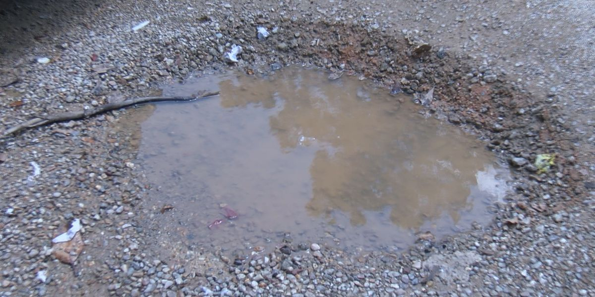 Mable Street residents tired of water leak
