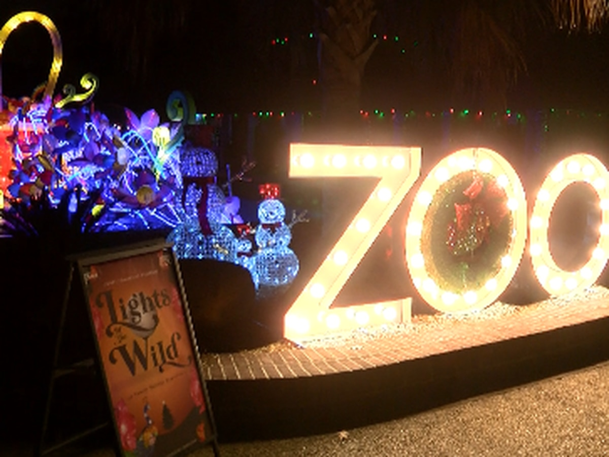 Lights of the Wild kicks off at Hattiesburg Zoo