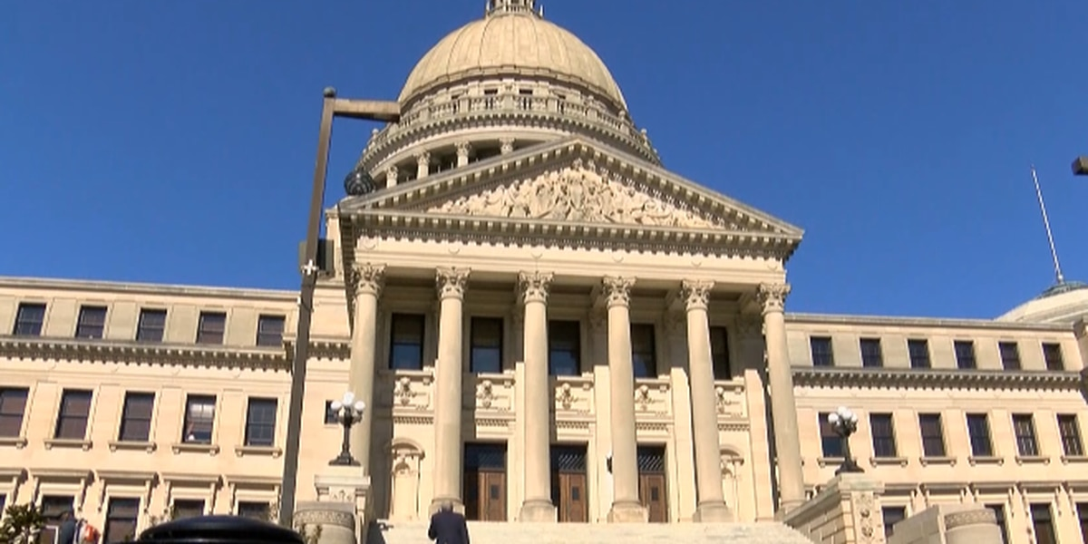 Runoff to decide Miss. House District 87 race