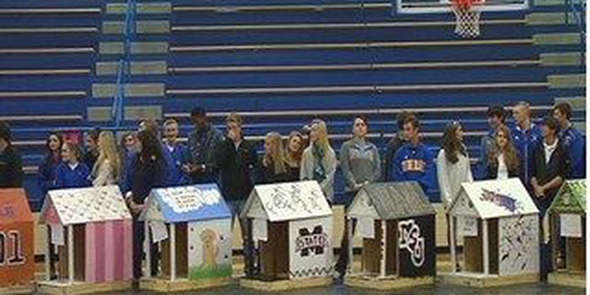 Sumrall arts students participate in Houses for Hounds