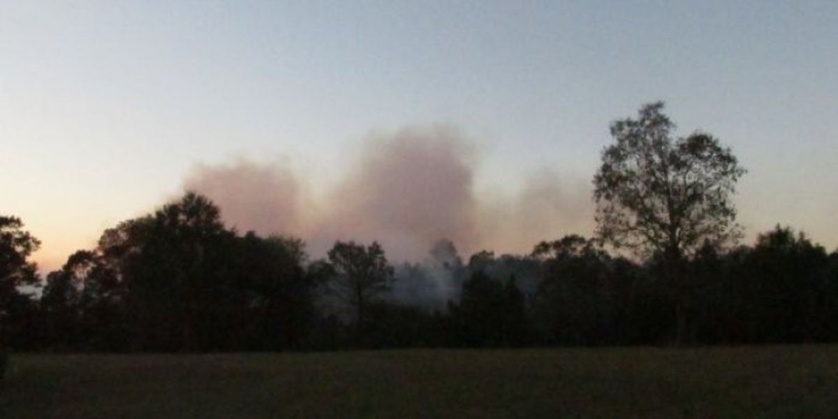 Large woods fire consumes several acres in Soso