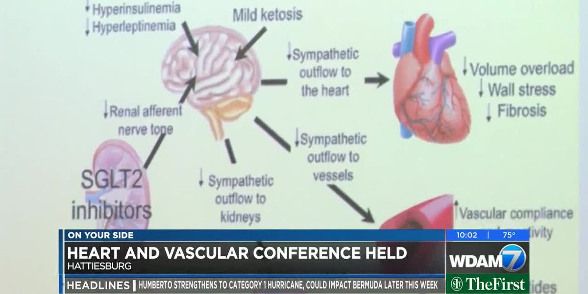 Cardiovascular conference held for medical providers in Hattiesburg