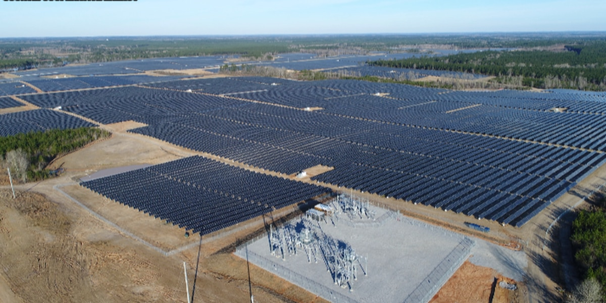 Lamar County solar panel plant to serve 55 counties