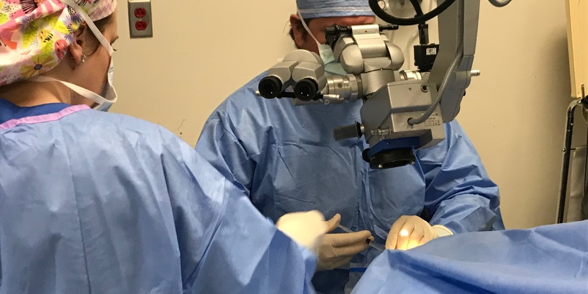 """""""Gift of Sight"""" program gives back to the community"""