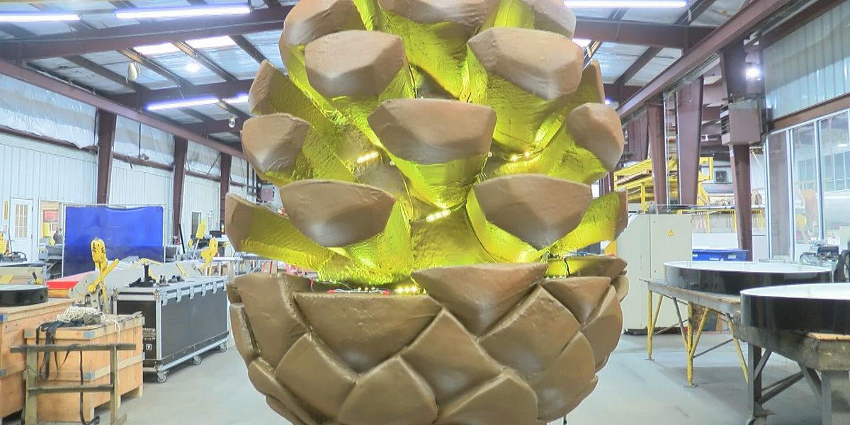 Laurel to ring in 2021 with pine cone drop