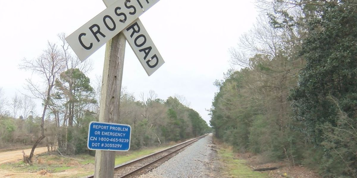 Man killed by train in Perry County identified