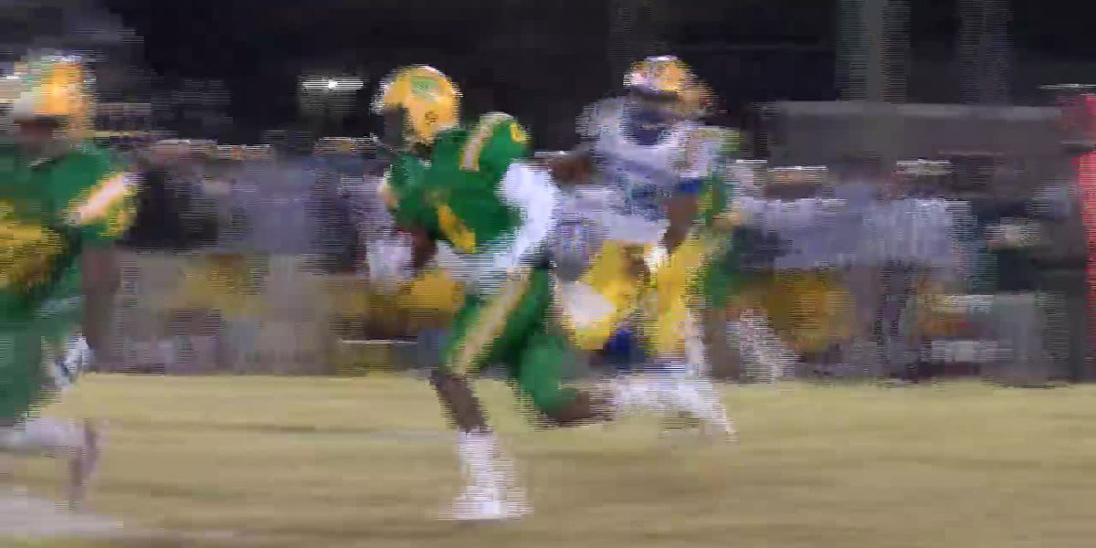 Bay Springs at Taylorsville highlights