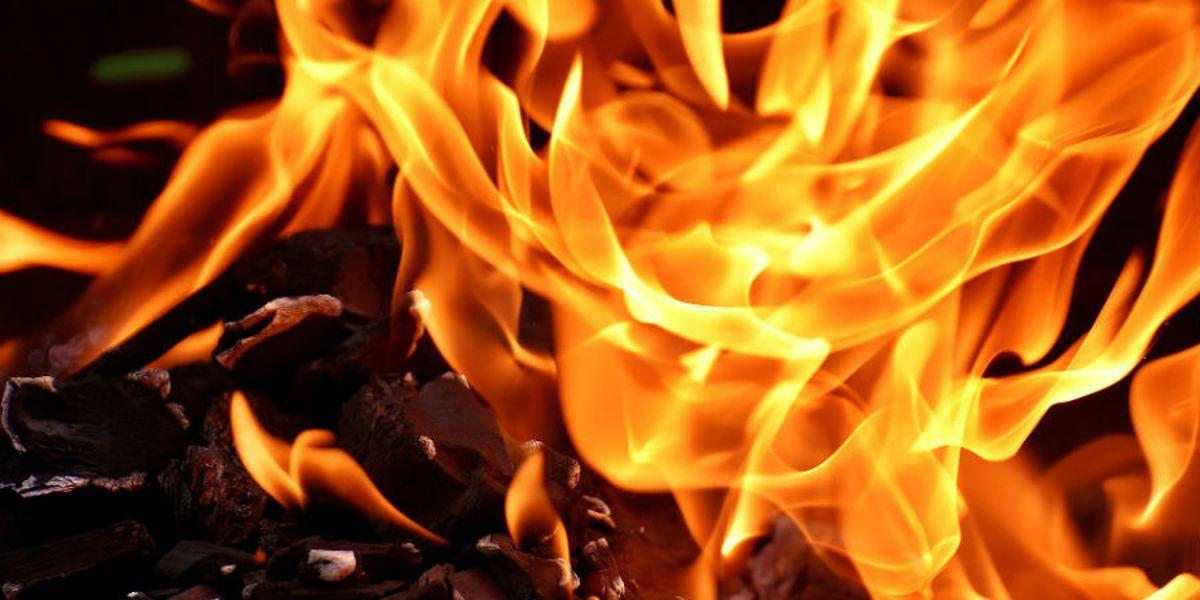 City of Petal, Jasper County issue burn bans