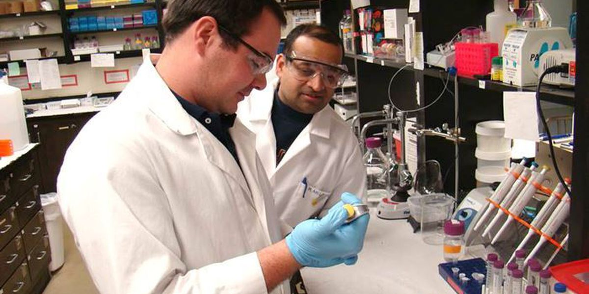Southern Miss researchers working to find cure for Alzheimer's disease