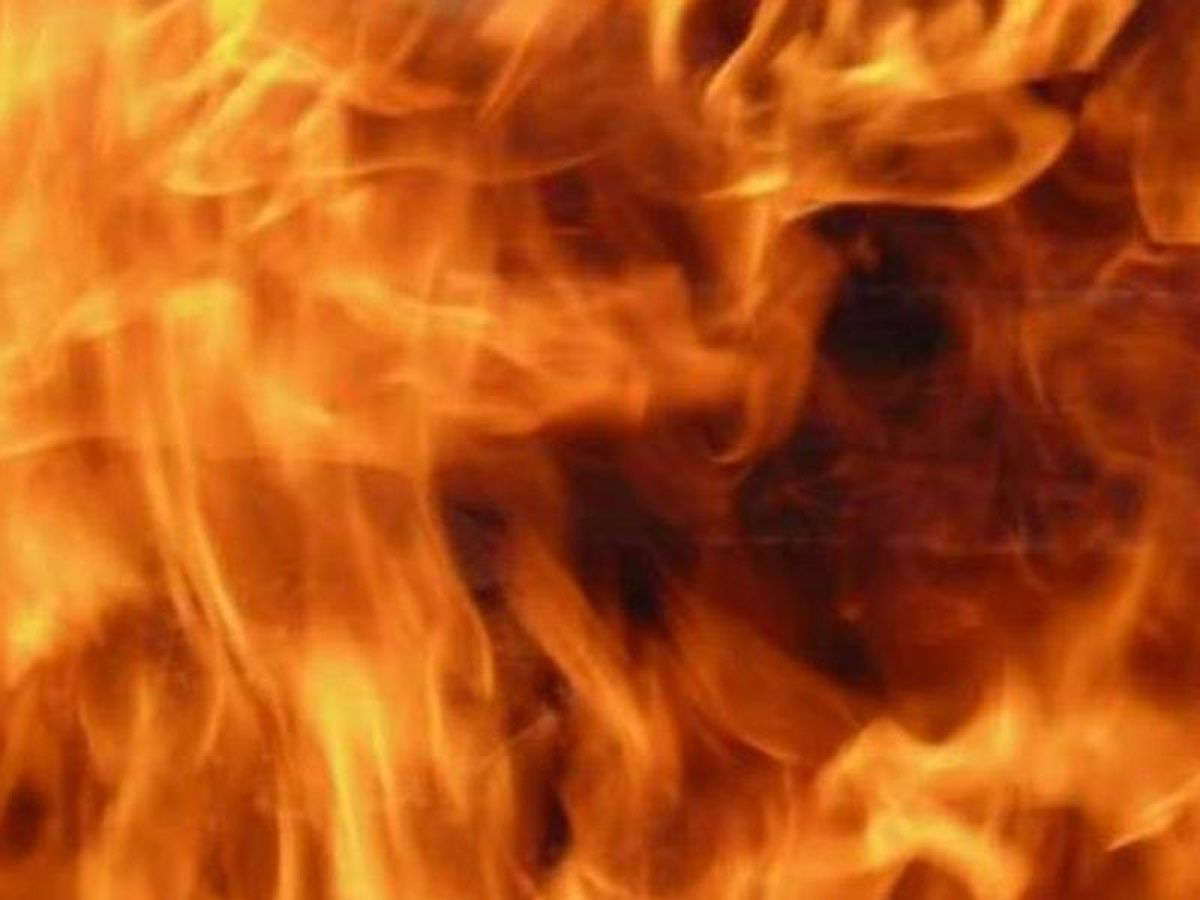 Mississippi woman dies while trying to rescue pets in fire