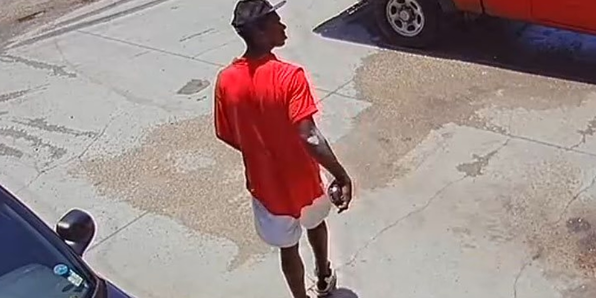 HPD searching for person of interest in auto burglary