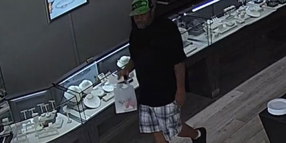 Petal police searching for suspects in auto burglary, credit card theft