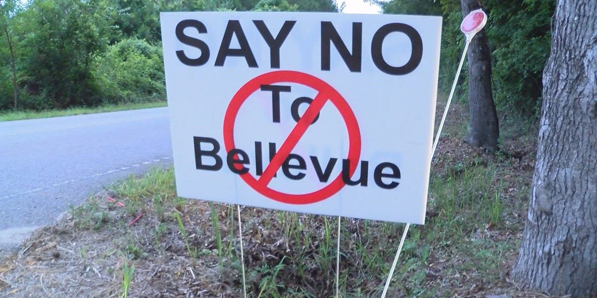 """Concerned Citizens of Bellevue: """"Unusual"""" signatures on petition filed to incorporate"""