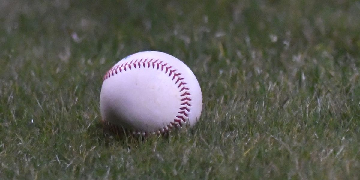 High school baseball - Friday scores