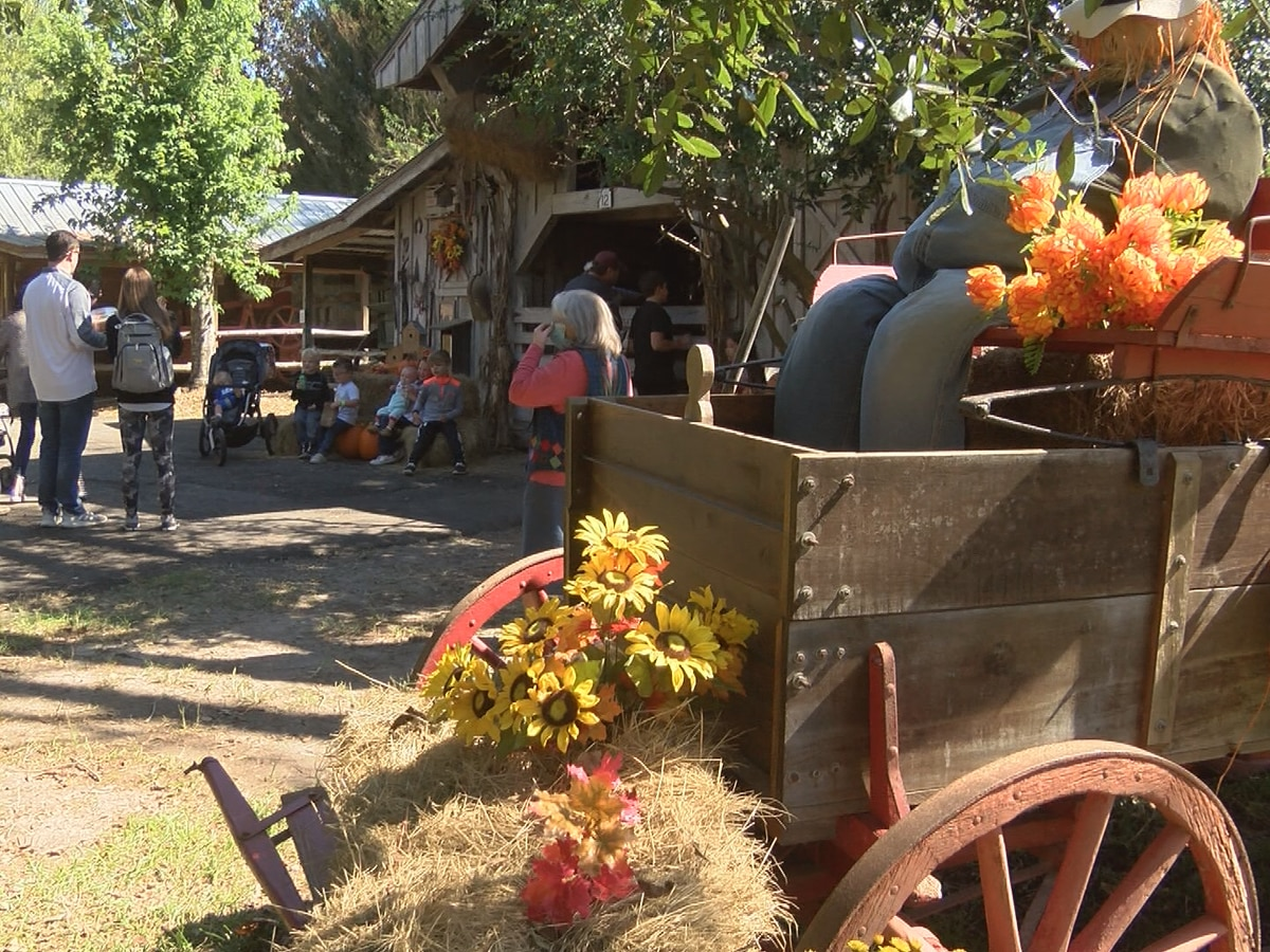 Landrum's hosts first Old-Tyme Fall Festival