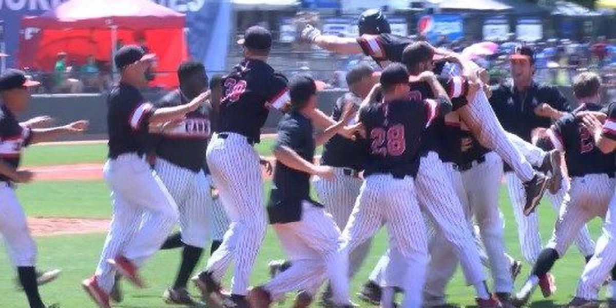 William Carey wins in walk-off fashion at NAIA World Series