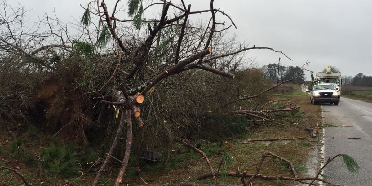 NWS confirms EF-2 tornado struck Simpson County